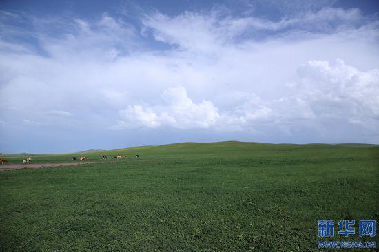 【幸福花开新边疆】北疆亮丽风景线的绿色生态新图景