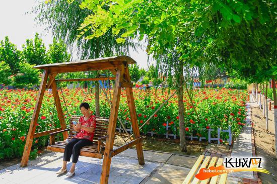 高清組圖|328座新增公園游園扮靚雄安雄州