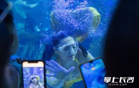 """""""美人鱼""""隔着玻璃与孩子们互动。"""
