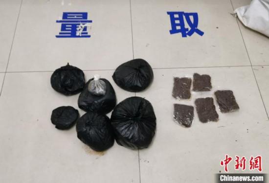 图为缴获的鸦片和卡苦。普洱边境管理支队供图