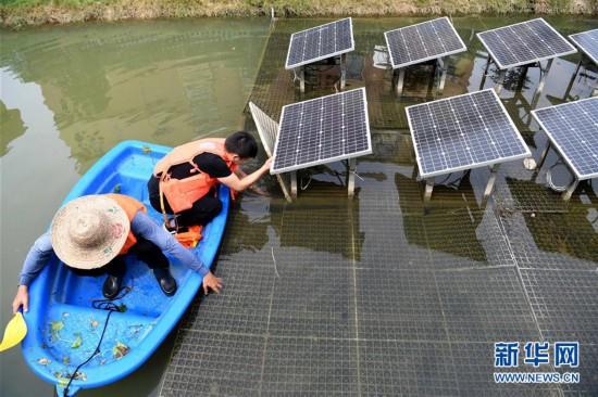 #(环境)(1)安徽瑶海:多措并举治理水环境