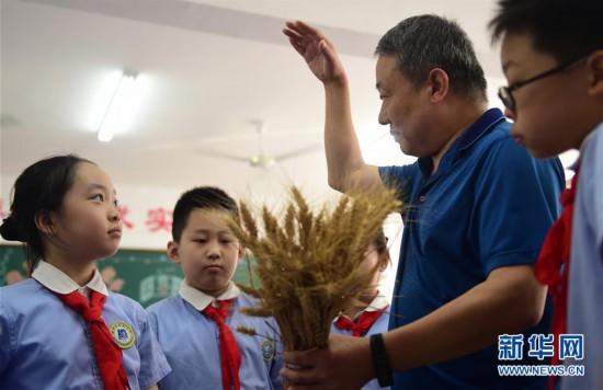 """(教育)(1)河北沧州:小麦专家为小学生讲""""珍惜粮食""""课"""