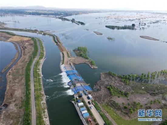 (防汛抗洪)(1)安徽:十八聯圩生態濕地蓄洪區開機排澇