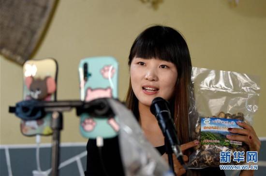 (图片故事)(10)秦岭山区女主播 抱着鸡儿做直播
