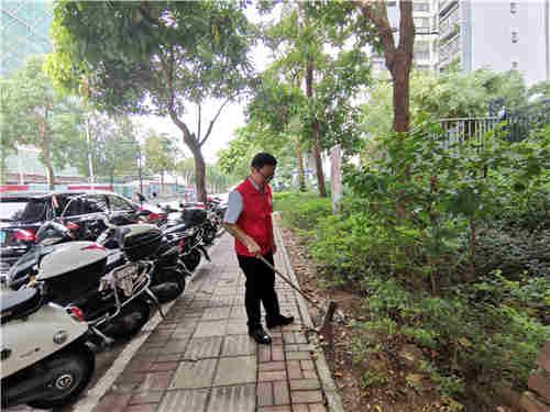 罗锋槟副主任在人行道上清扫干枯树叶
