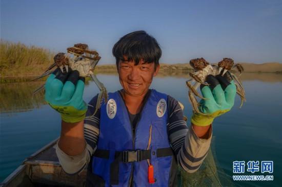 """(图片故事)(1)买买江・艾尼:我在""""死亡之海""""抓螃蟹"""