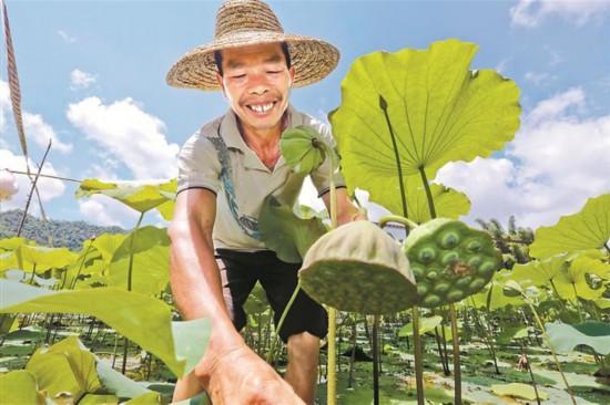 深圳扶贫协作和合作交流成果图片展举行