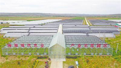 海原:产业兴旺驱动农业农村高质量发展