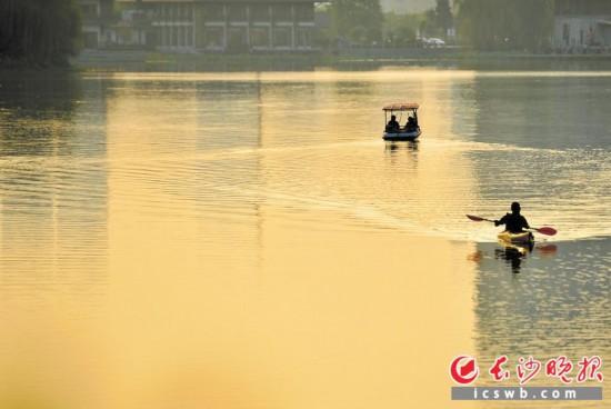 月湖公園如鏡水面上,市民正在悠閑劃船。   長沙晚報全媒體記者 鄒麟 攝
