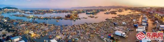 福建东山:渔港丰收忙