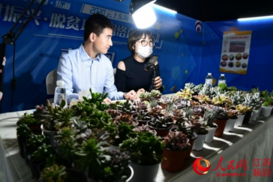 江蘇東海:電商直播做出大產業