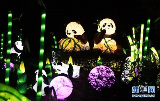 重庆:首届南温泉灯会亮灯