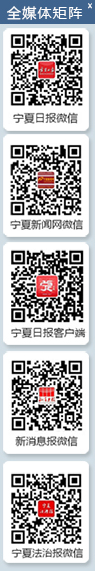 宁夏启动法治政府示范创建验收工作