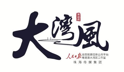 大湾风新logo