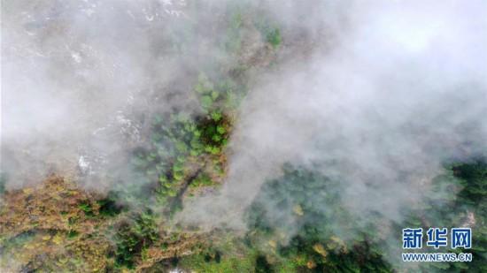 (美丽中国)(1)扎尕那雾境