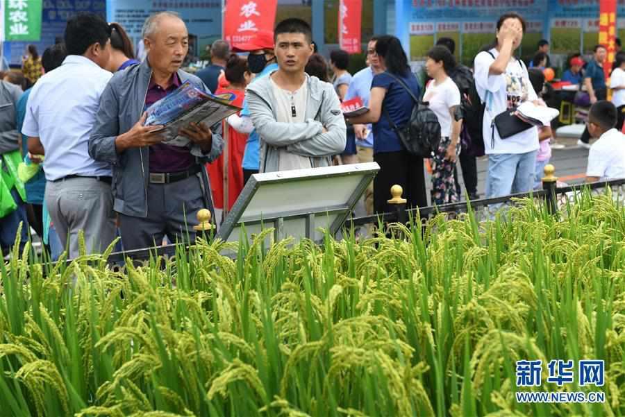 (经济)(1)第十八届长春农博会开幕