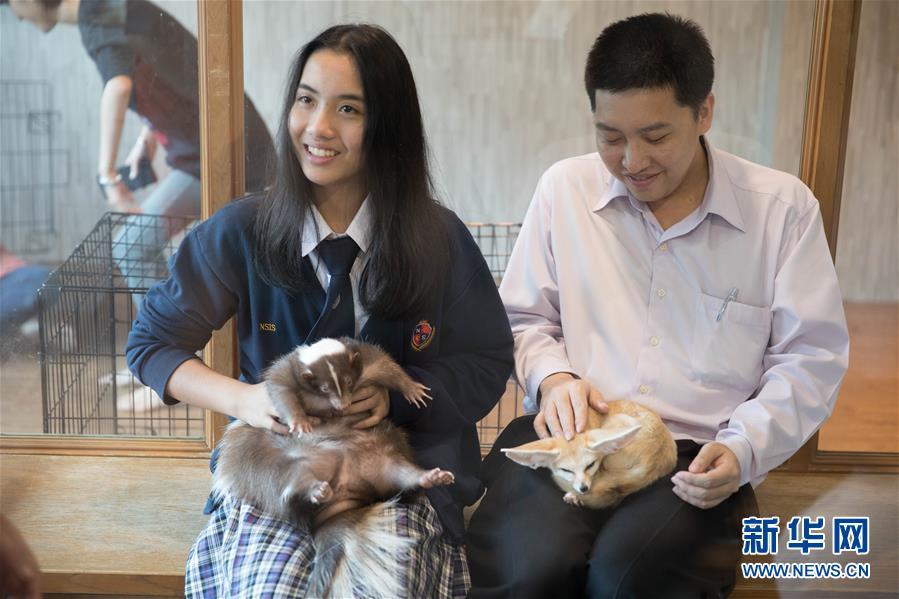 (国际)(9)探访曼谷动物咖啡馆