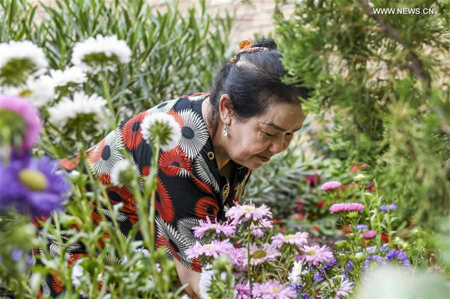 Local villagers shake off poverty through plantation, livestock breeding in Xinjiang
