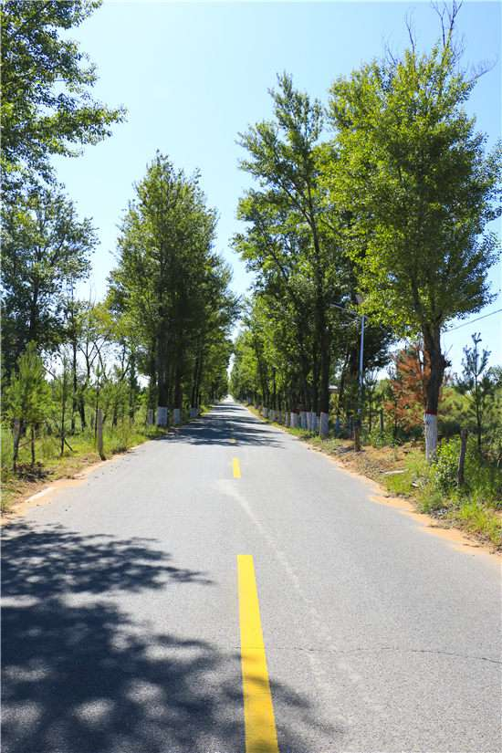 行政村村村都有通村公路