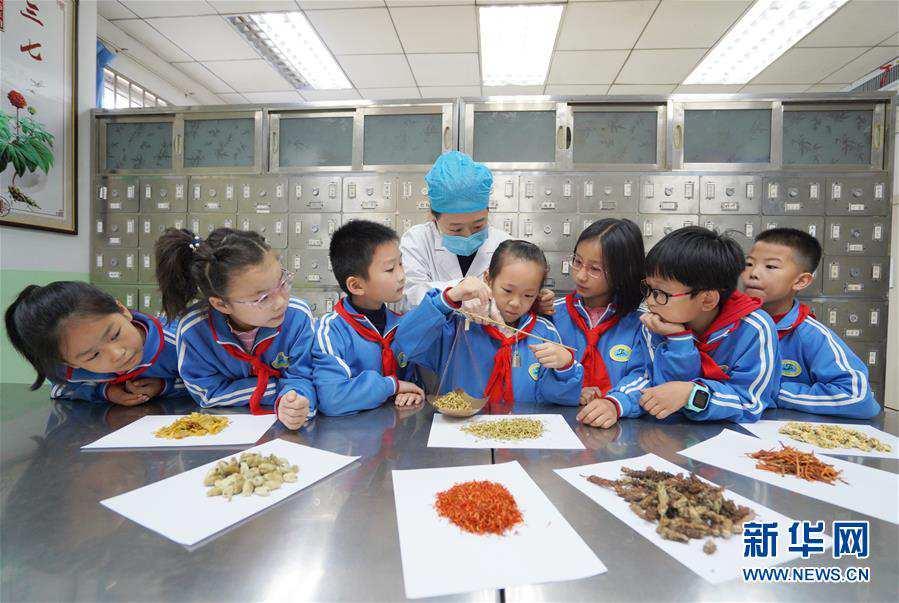 (教育)(1)河北内丘:体验中医文化 感受中医魅力