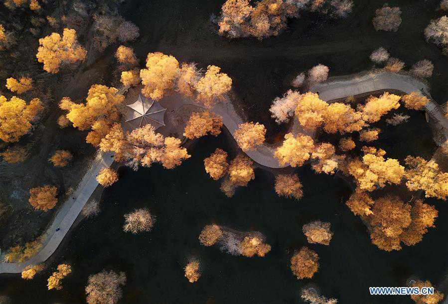 Autumn scenery in Jiuquan, northwest China's Gansu