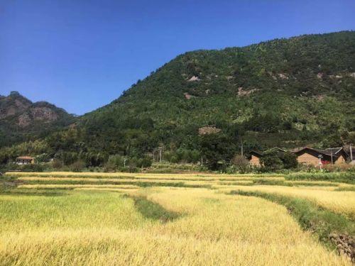 http://www.clzxc.com/wenhuayichan/13121.html