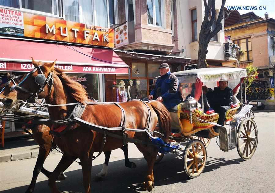 TURKEY-ISTANBUL-HORSE-DRAWN CARRIAGES-BAN