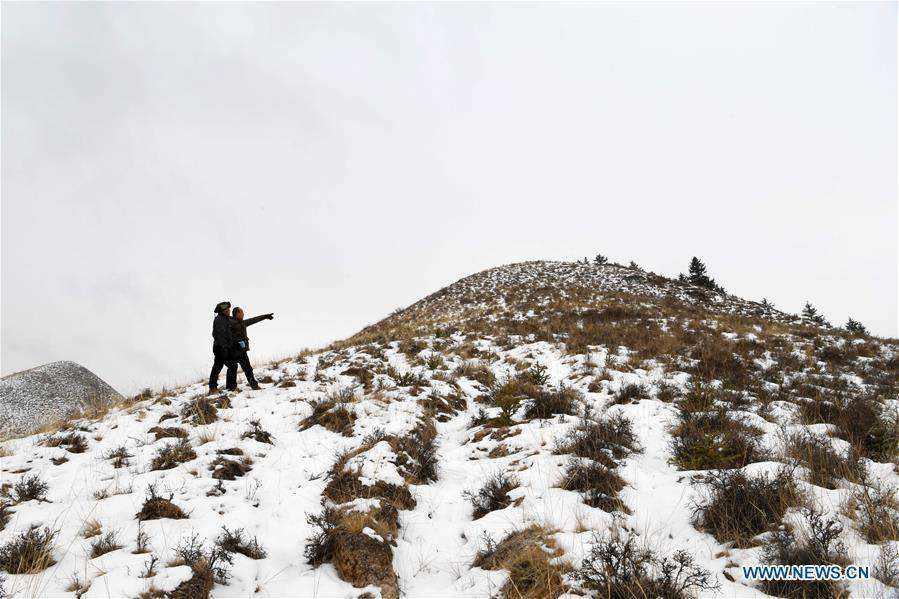 Forest rangers in NW China's Gansu