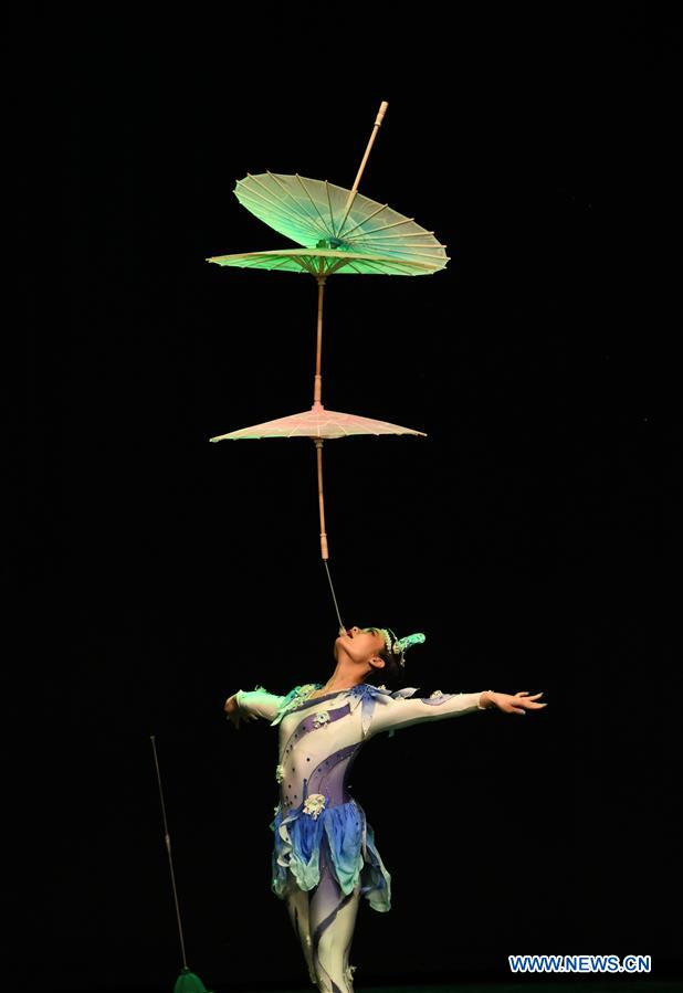 Chinese acrobats, dancers perform in Istanbul, Turkey