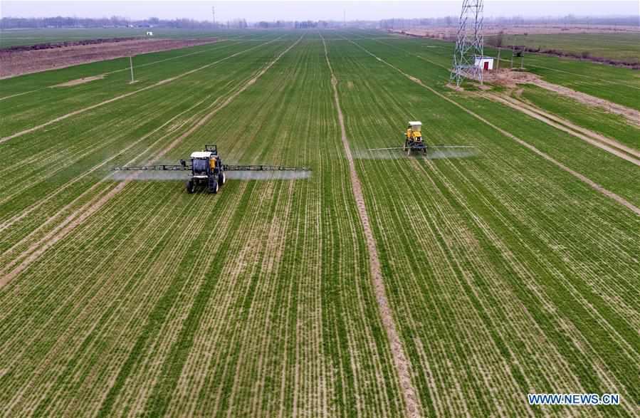Spring farming underway in Hebei