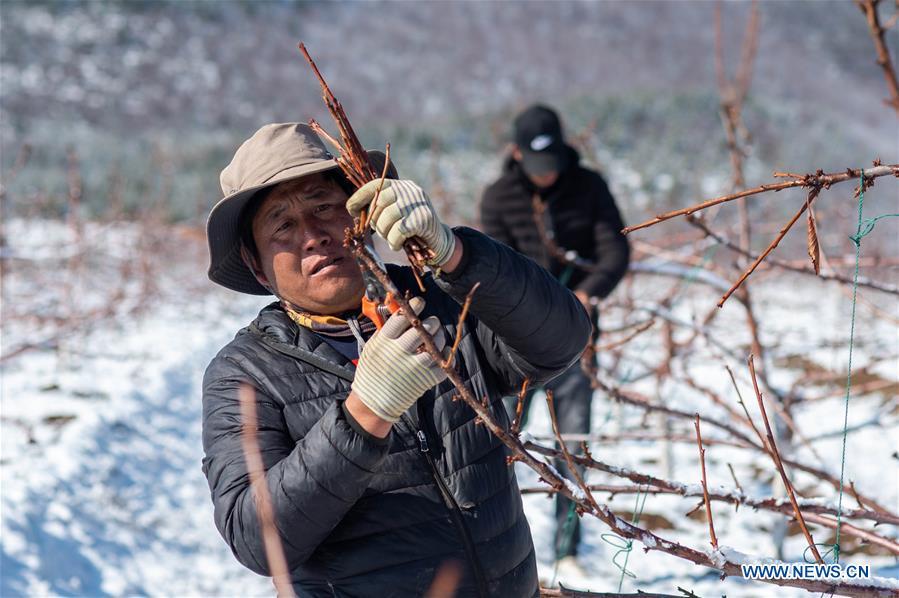 CHINA-YUNNAN-DIQING-COVID-19-POVERTY ALLEVIATION (CN)