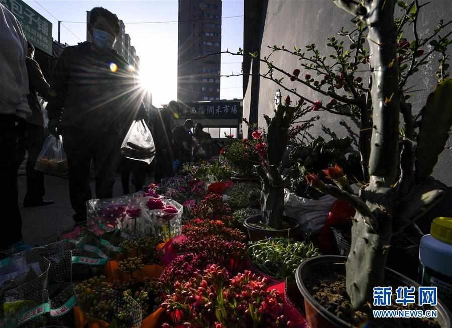(社会)(2)宁夏银川:早市里的生活气息