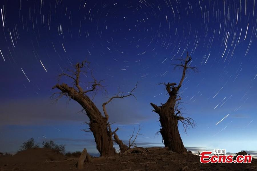 Peaceful starry night at Tarim Basin in Xinjiang