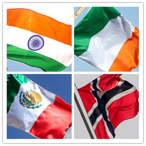 India, Ireland, Mexico, Norway elected non-permanent members of Security  Council - People's Daily Online