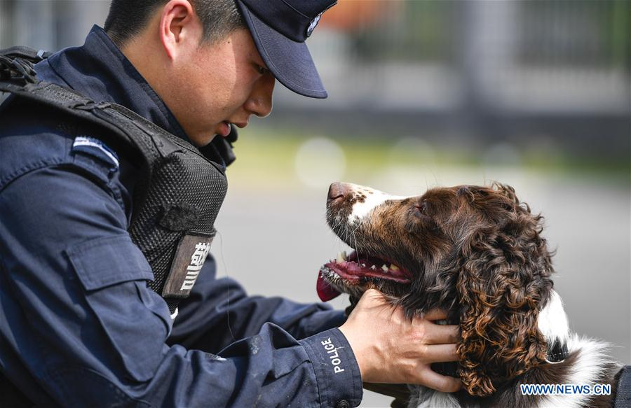 CHINA-JILIN-BAISHAN-BORDER-SNIFFER DOG (CN)