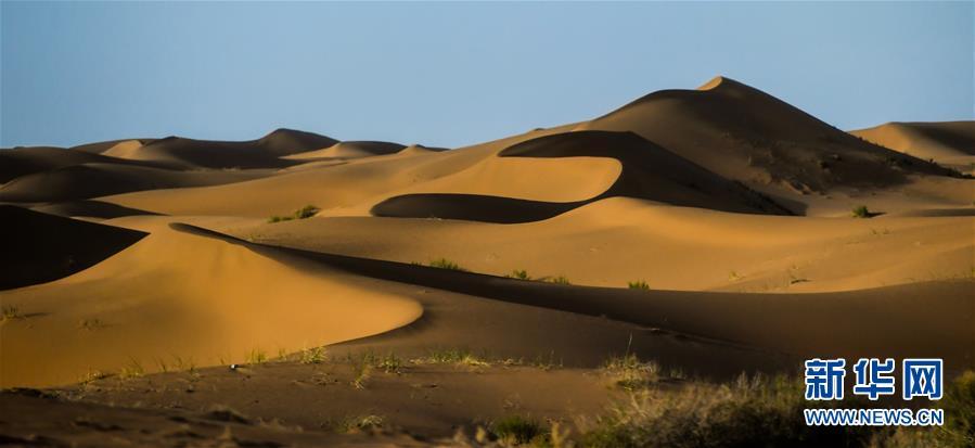 (美丽中国)(5)腾格里沙漠夏日即景