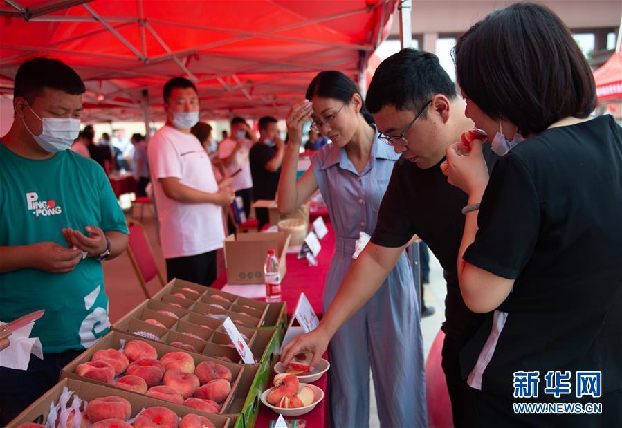 (社会)(2)保定扶贫产品直供北京采购基地成立