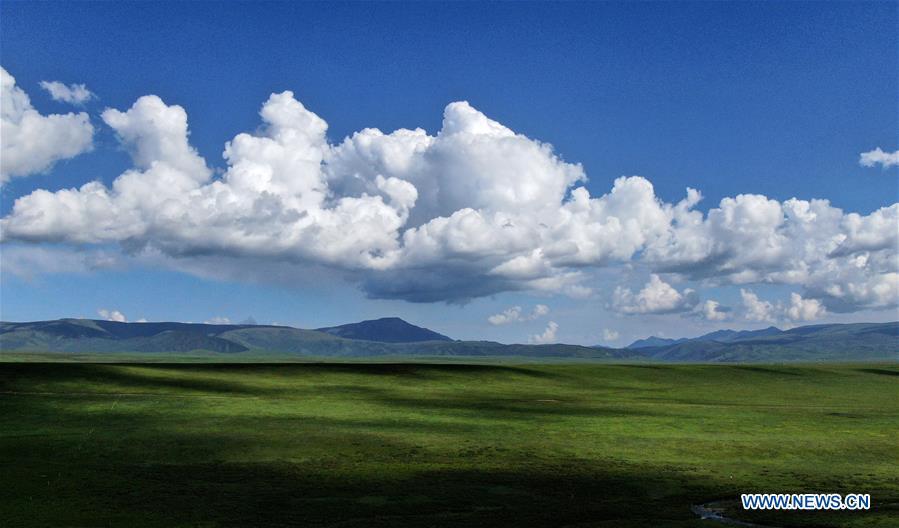 CHINA-QINGHAI-GRASSLANDS-SCENERY (CN)