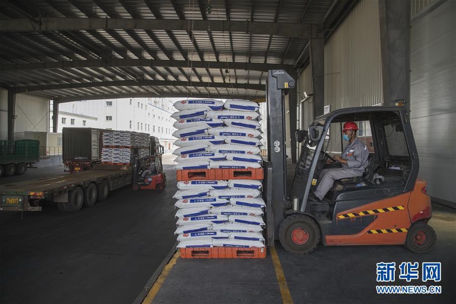 (经济)(4)黑龙江大庆:玉米深加工助力农民增收