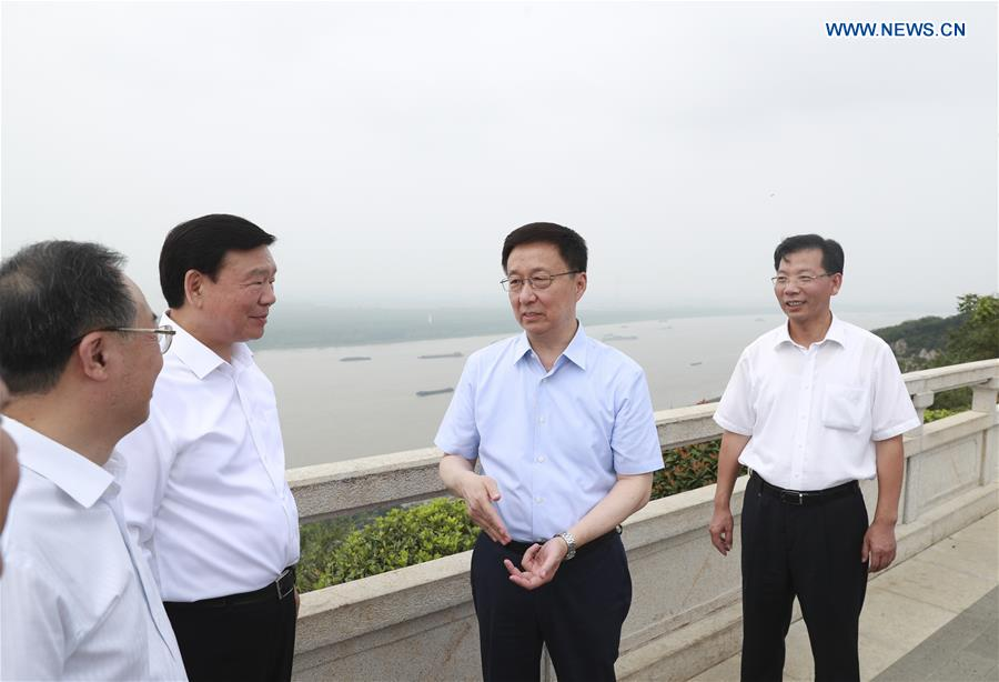 Chinese vice premier stresses innovation, ecological environment improvement