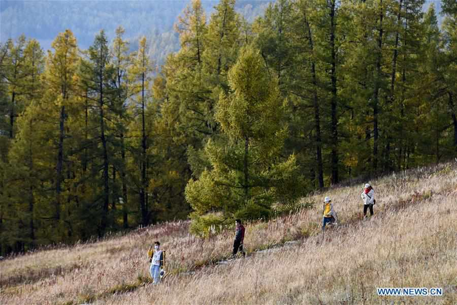 Xinjiang rolls out preferential policies to boost tourism recovery
