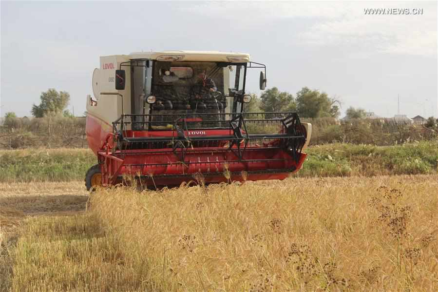 KAZAKHSTAN-CHINA-COMBINE HARVESTER