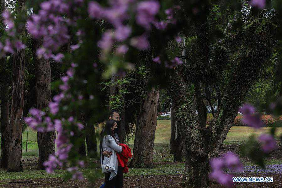In pics: first day of spring in Sao Paulo, Brazil