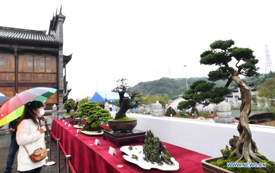 Floral art expo kicks off in Chongqing
