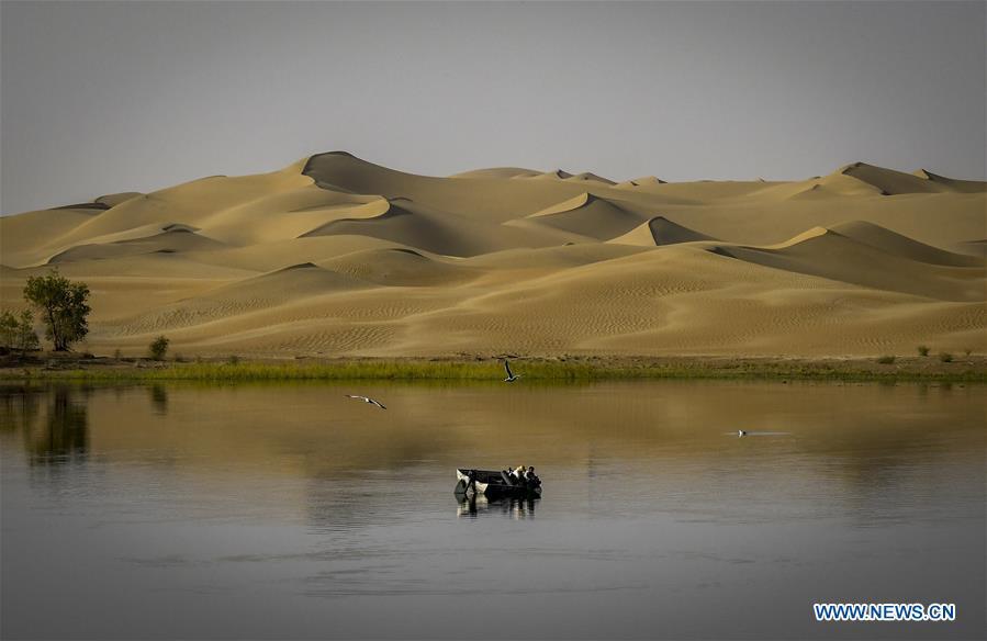 CHINA-XINJIANG-TIANSHAN MOUNTAINS-HARVEST (CN)