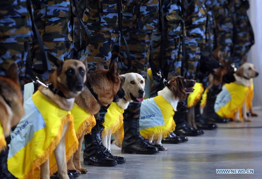 Sniffer dogs attend pass ceremony at Sri Lanka Air Force Base