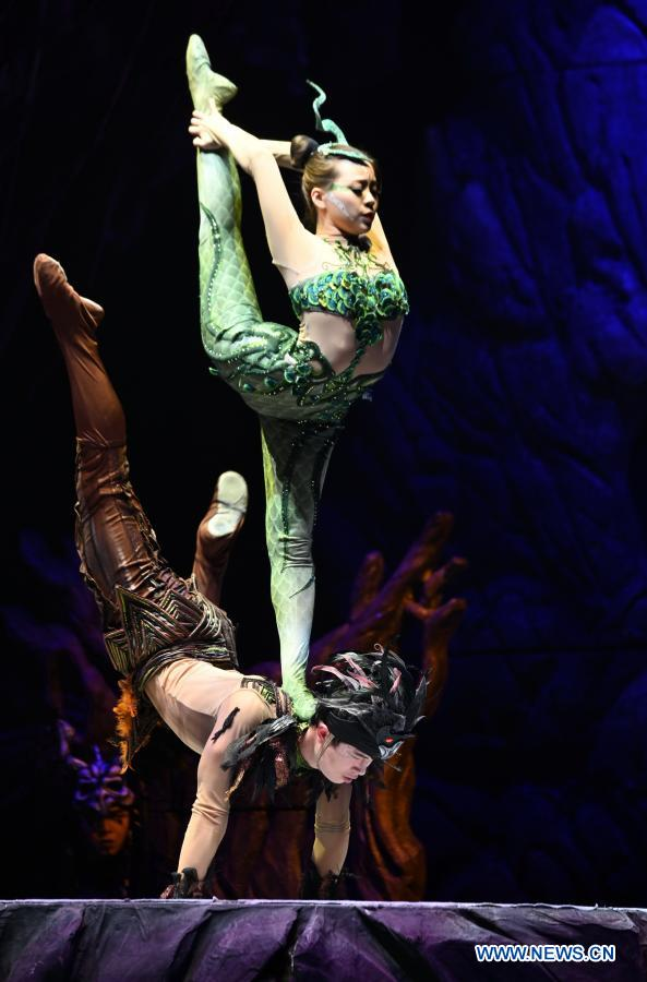 """Acrobatic rendition of """"The Swan Lake"""" staged in Fuzhou"""