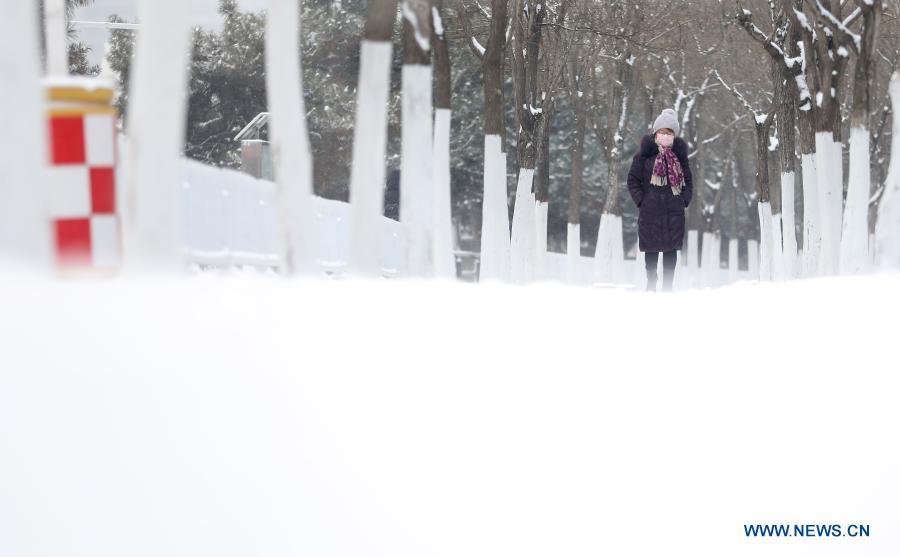 Snow hits Shenyang in NE China