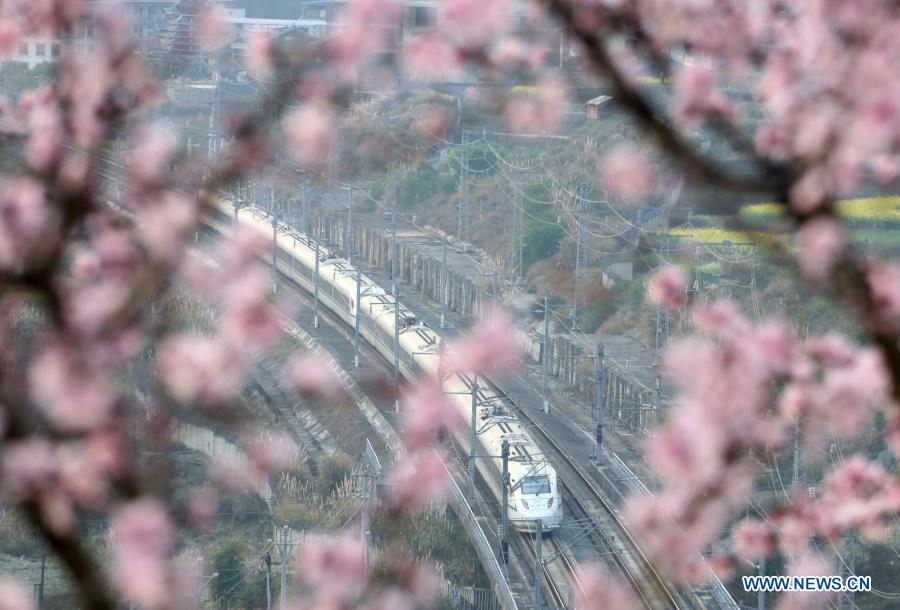 Spring scenery in east, southwest China