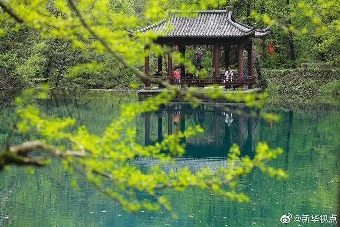 清明节假期国内旅游出游1.02亿人次